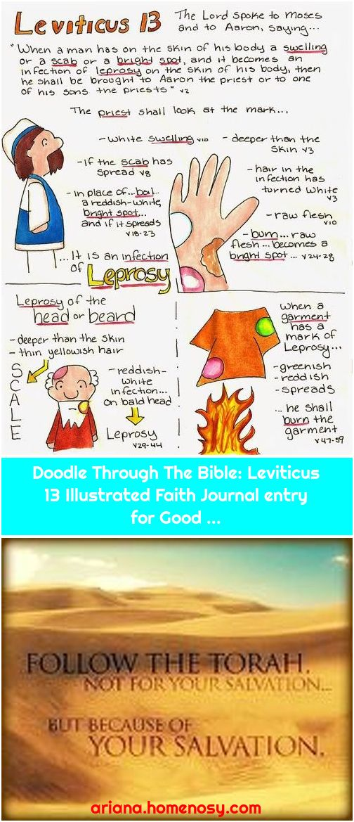 Doodle Through The Bible: Leviticus 13 Illustrated Faith Journal entry for Good ...